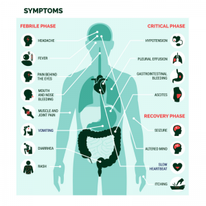Symptoms of Dengue